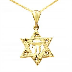 שרשרת מגן דוד עם חי מזהב צהוב 14K. מתנה מדהימה לגבר או אישה. מחיר מבצע! שליח חינם עד הבית!